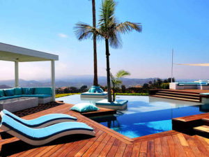 palma i leżaki