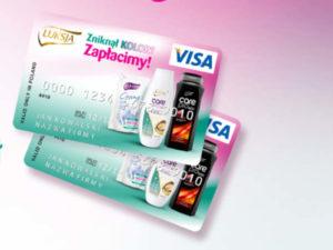 dwie kartu Visa